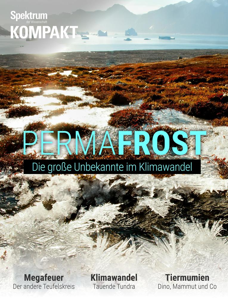 Spektrum Kompakt - Permafrost als eBook
