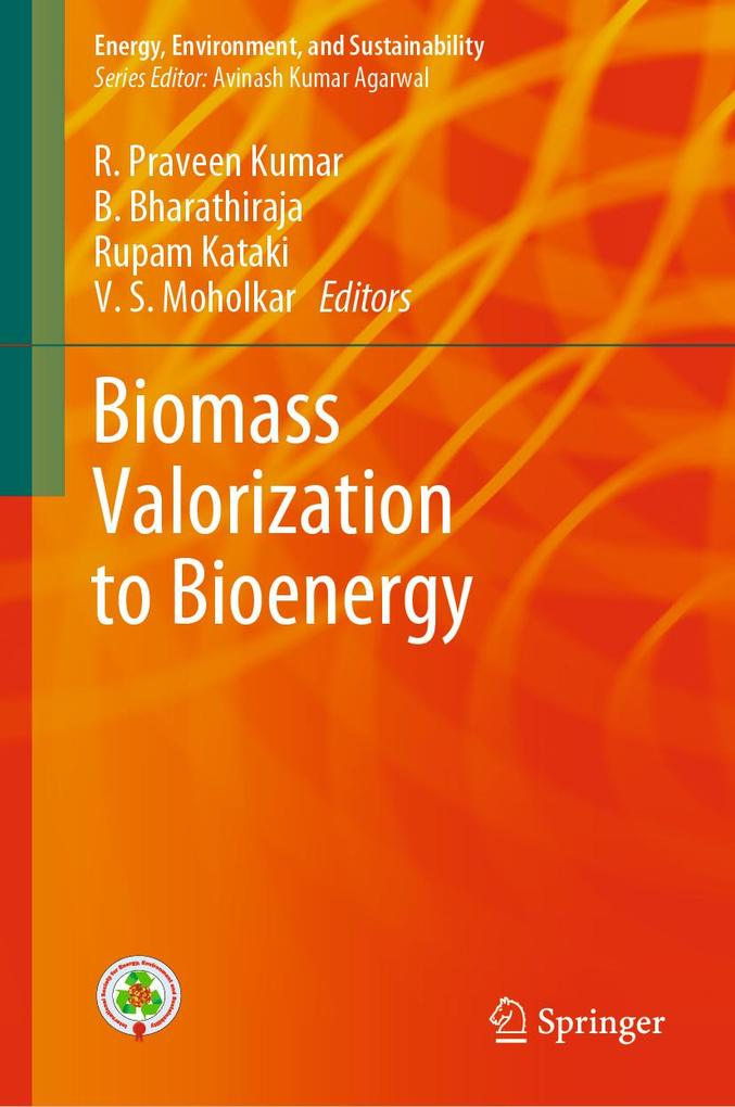Biomass Valorization to Bioenergy als eBook pdf