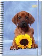 Terminplaner Hund 2021