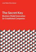 The Secret Key: Business Model Innovation for Established Companies