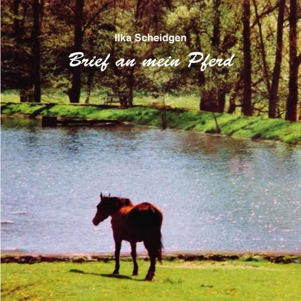 Brief an mein Pferd als Buch (kartoniert)