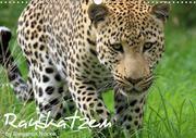 Raubkatzen (Wandkalender 2021 DIN A3 quer)