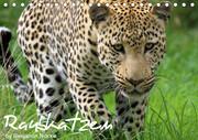 Raubkatzen (Tischkalender 2021 DIN A5 quer)