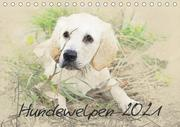 Hundewelpen 2021 (Tischkalender 2021 DIN A5 quer)