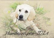 Hundewelpen 2021 (Wandkalender 2021 DIN A2 quer)