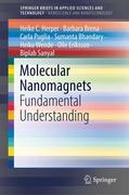 Molecular Nanomagnets