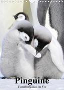 Pinguine. Familienglück im Eis (Wandkalender 2021 DIN A4 hoch)