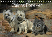 Cairns Forever (Tischkalender 2021 DIN A5 quer)