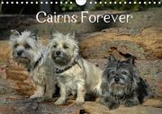 Cairns Forever (Wandkalender 2021 DIN A4 quer)