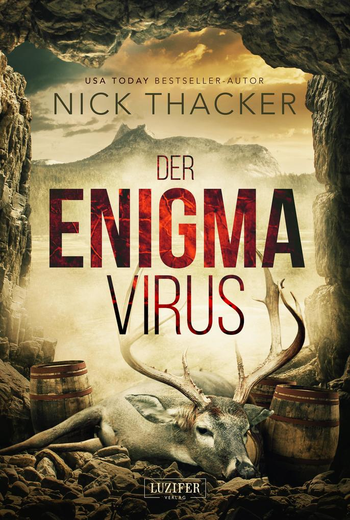 DER ENIGMA-VIRUS als eBook epub