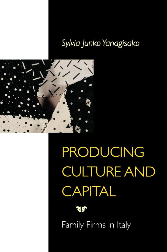 Producing Culture and Capital als eBook epub