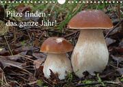 Pilze finden - das ganze Jahr! (Wandkalender 2021 DIN A4 quer)