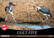 Ugly Five (Tischkalender 2021 DIN A5 quer)