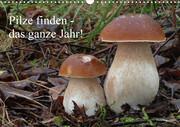 Pilze finden - das ganze Jahr! (Wandkalender 2021 DIN A3 quer)