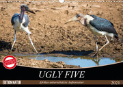 Ugly Five (Wandkalender 2021 DIN A3 quer)