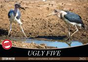 Ugly Five (Wandkalender 2021 DIN A2 quer)