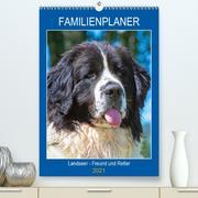 Familienplaner Landseer - Freund und Retter (Premium, hochwertiger DIN A2 Wandkalender 2021, Kunstdruck in Hochglanz)