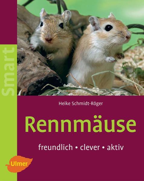 Rennmäuse als Buch von Heike Schmidt-Röger