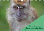 Die aufregende Welt der Javaneräffchen (Wandkalender 2021 DIN A4 quer)