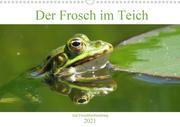 Der Frosch im Teich - auf Froschbeobachtung (Wandkalender 2021 DIN A3 quer)