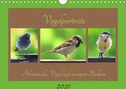 Vogelporträts - Heimische Vögel auf meinem Balkon (Wandkalender 2021 DIN A4 quer)