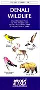 Nevada Birds: A Folding Pocket Guide to Familiar Species