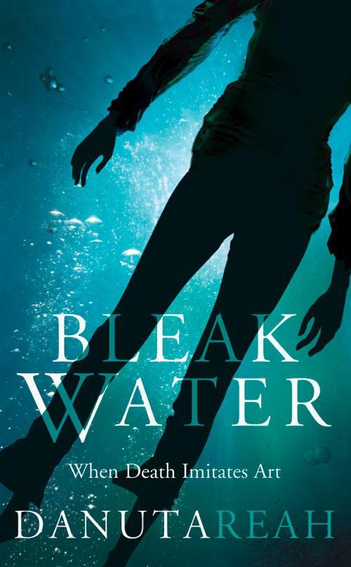 Bleak Water als Taschenbuch
