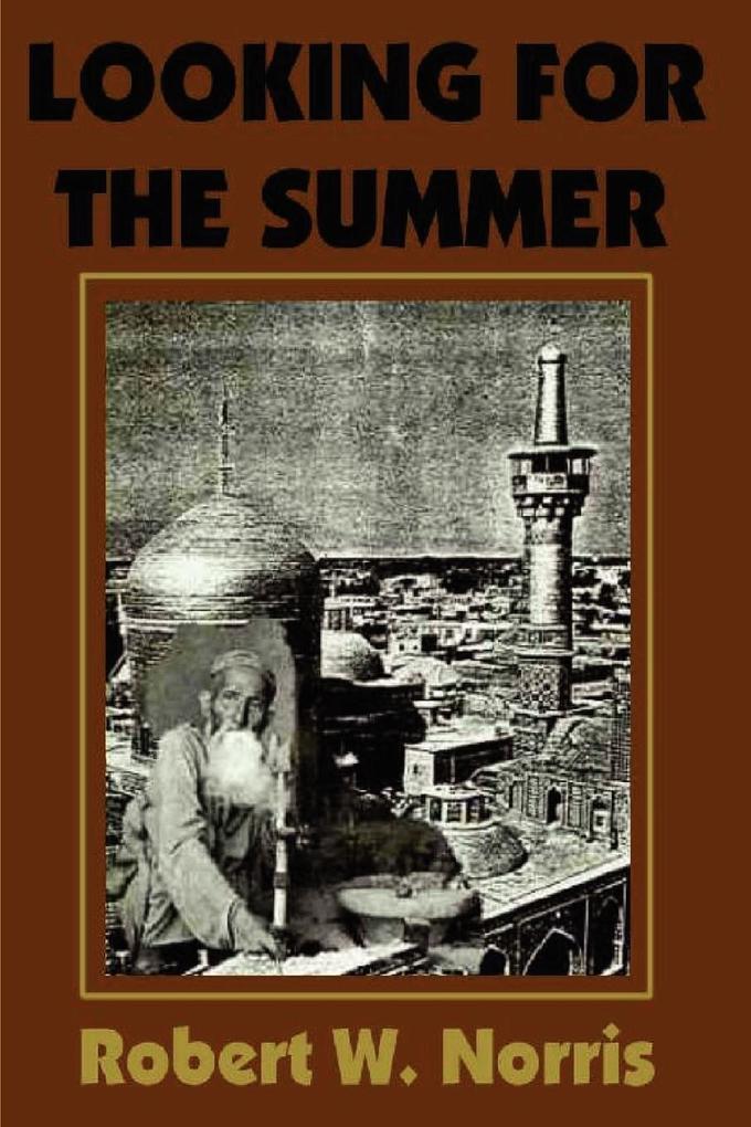 Looking for the Summer als Taschenbuch