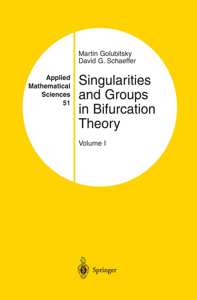 Singularities and Groups in Bifurcation Theory als Buch (gebunden)
