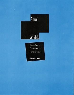Small Worlds: Minimalism in Contemporary French Literature als Buch (gebunden)