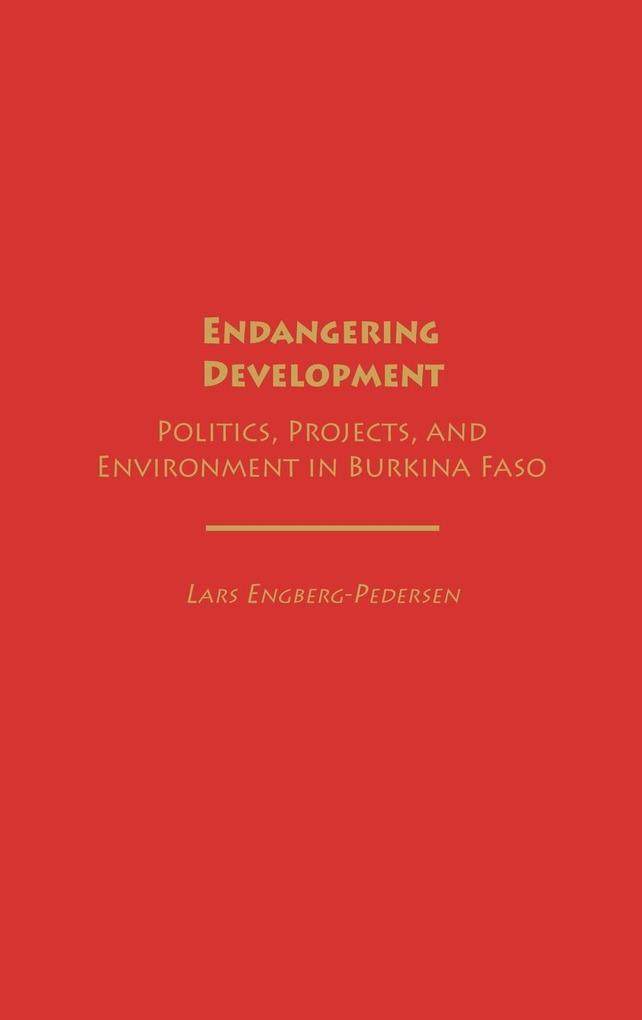 Endangering Development als Buch (gebunden)