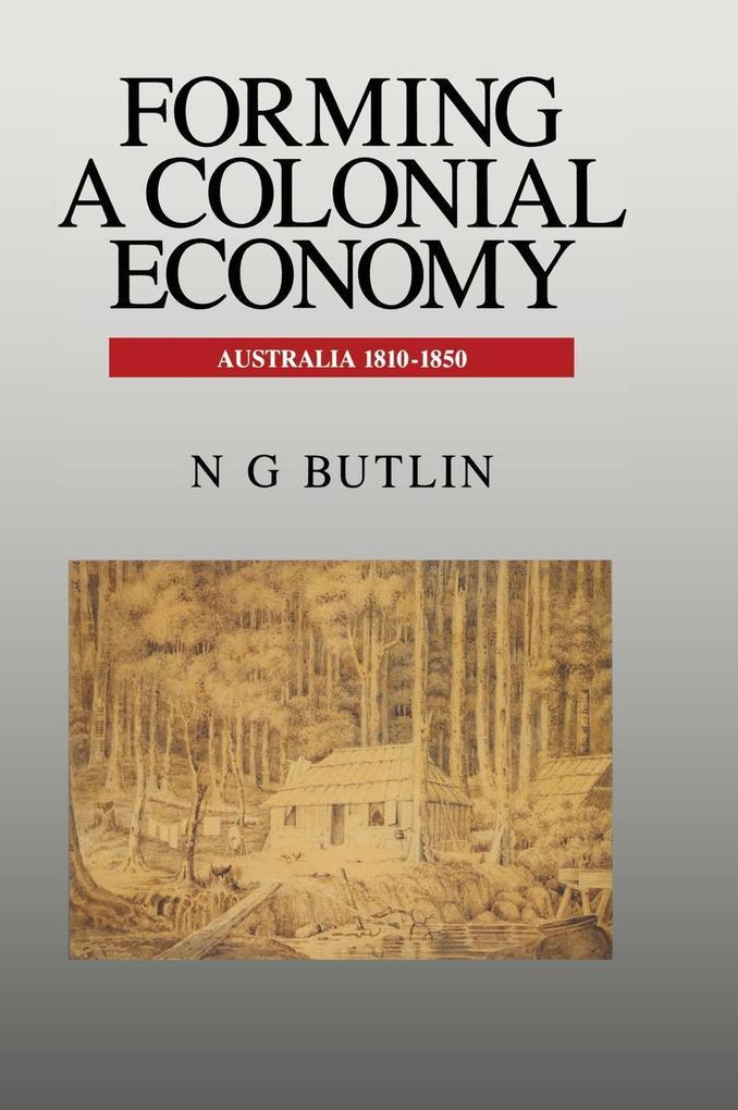 Forming a Colonial Economy als Buch (gebunden)