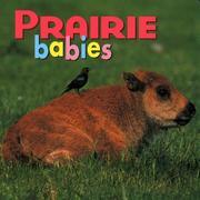Prairie Babies