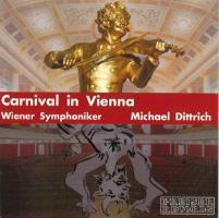 Karneval In Wien