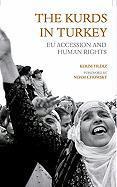 The Kurds in Turkey als Buch
