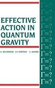 Effective Action in Quantum Gravity
