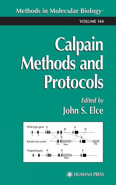 Calpain Methods and Protocols als Buch
