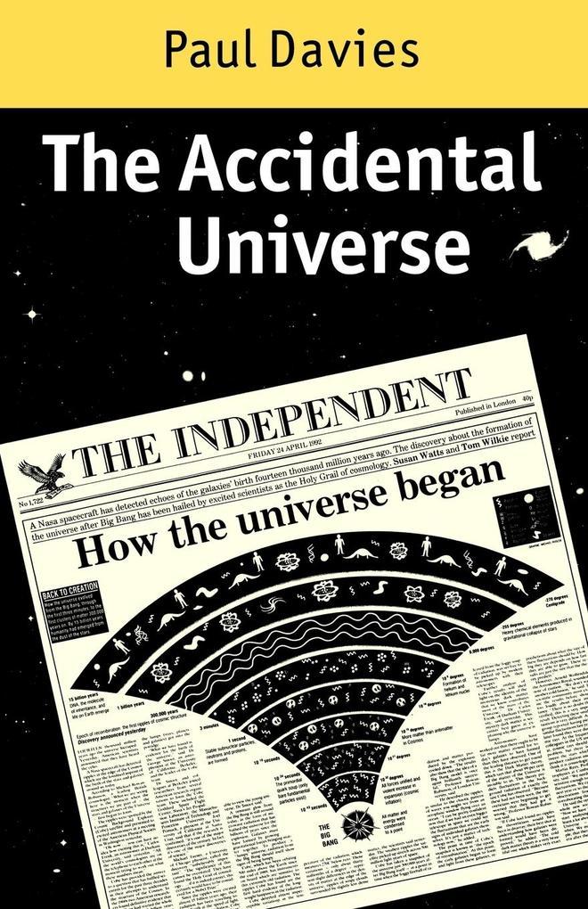 The Accidental Universe als Taschenbuch