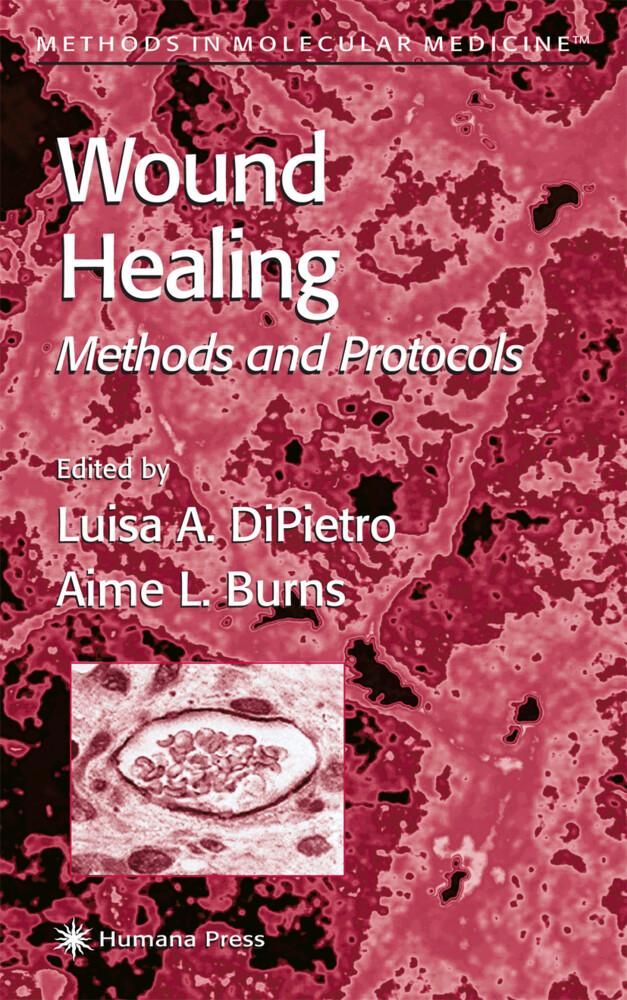 Wound Healing als Buch