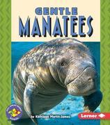 Gentle Manatees