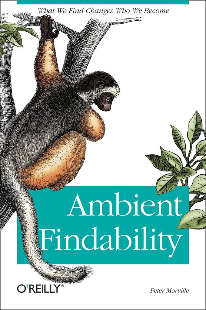 Ambient Findability als Buch