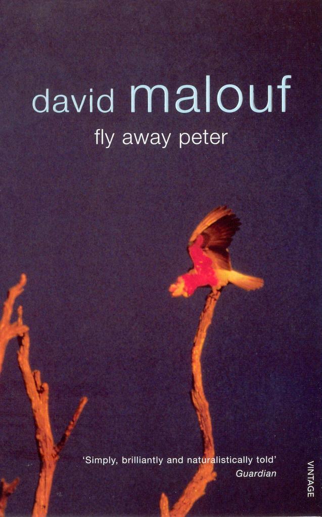 Fly Away Peter als Taschenbuch