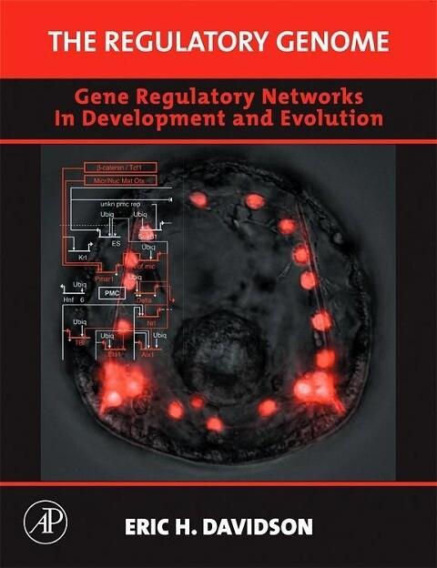 The Regulatory Genome: Gene Regulatory Networks in Development and Evolution als Buch