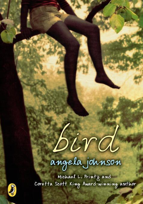 Bird als Taschenbuch