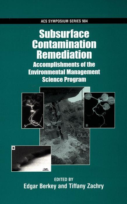Subsurface Contamination Remediation: Accomplishments of the Environmental Management Science Program als Buch