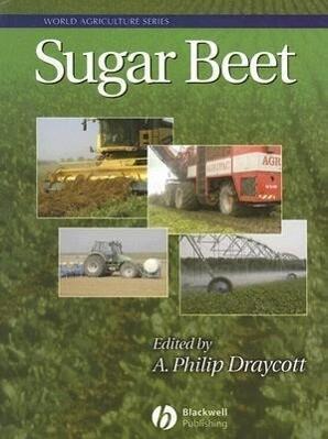 Sugar Beet als Buch