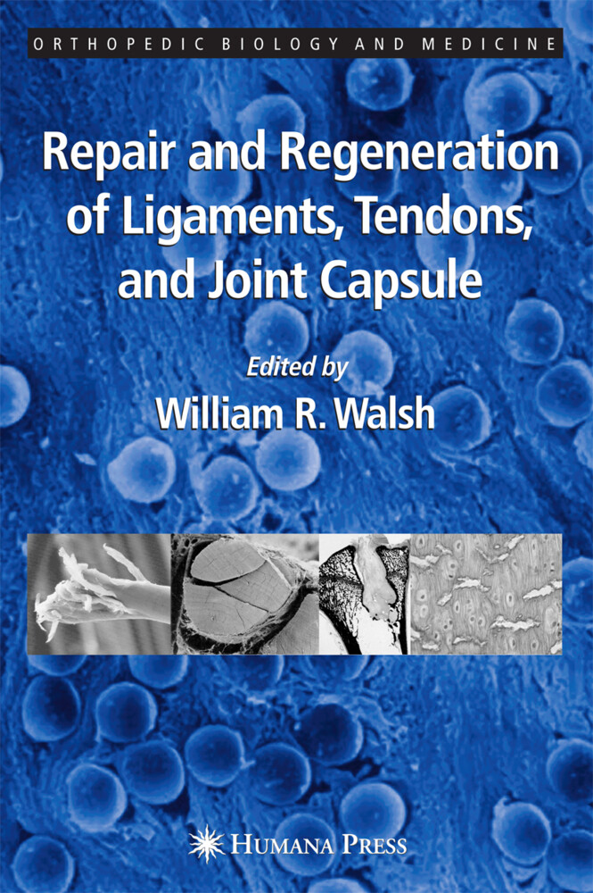 Repair and Regeneration of Ligaments, Tendons, and Joint Capsule als Buch