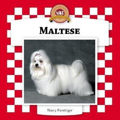 Maltese als Buch