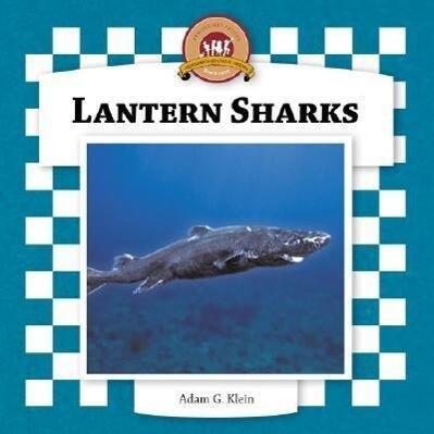Lantern Sharks als Buch