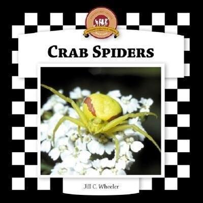 Crab Spiders als Buch